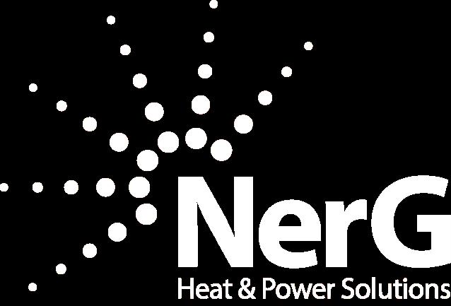 NerG logo white