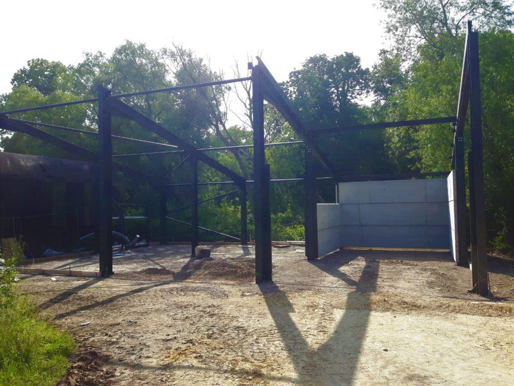 Biomass Building - Week 12
