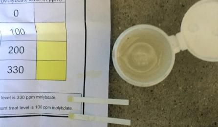 Inhibitor testing